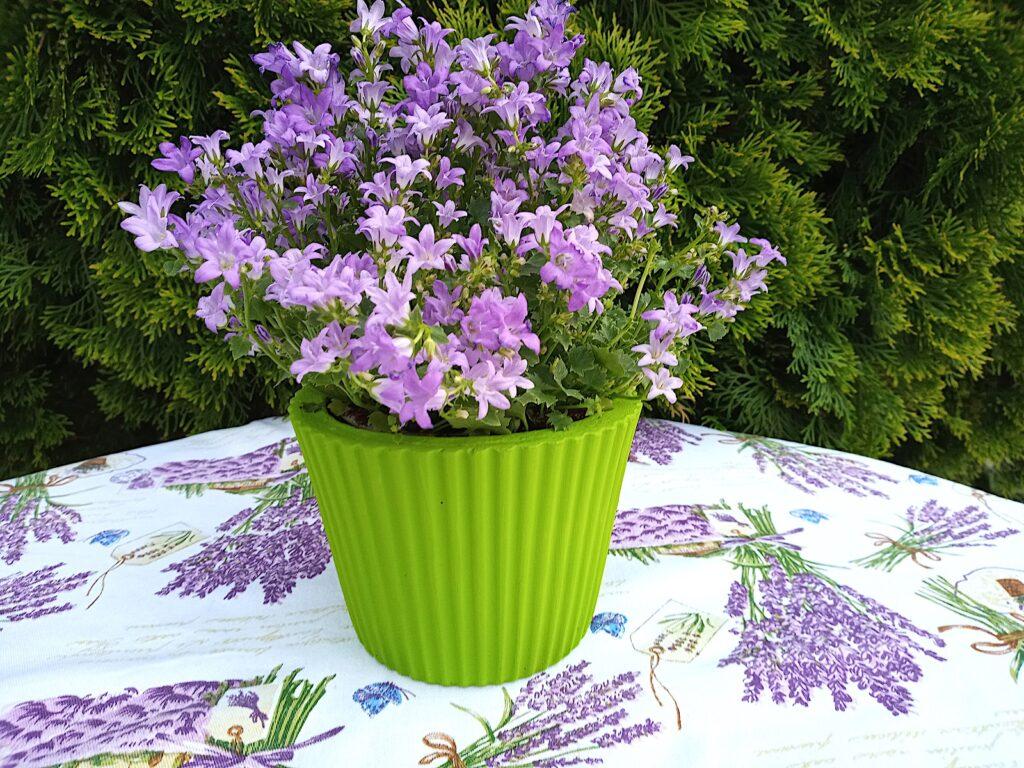 Zöld Beton Virágtartó